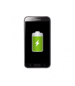 Remplacement Samsung Galaxy S5 SM-G900 Batterie