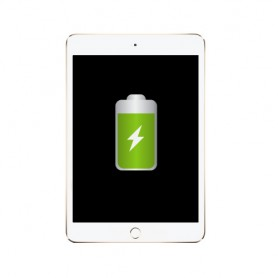 Remplacement batterie Apple iPad mini 4